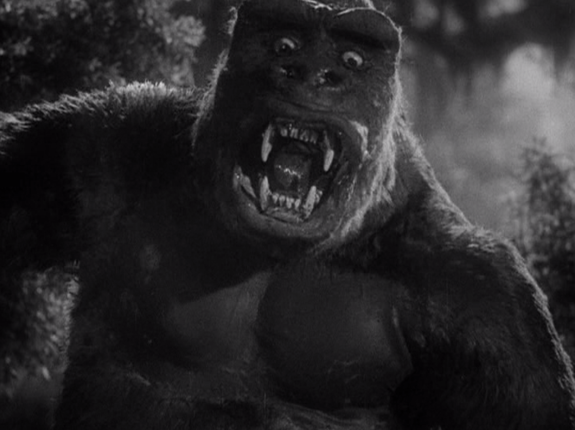 king kong 1933 and 2005 comparison and contrast Blu-ray review blu-ray disc review by bill hunt, editor of the digital bits king kong 1933 (2005) - warner bros  still, contrast here is excellent, with a wide .