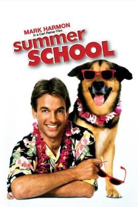 Summer_School_Poster